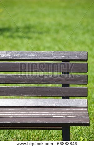 A wooden bench in summer at park