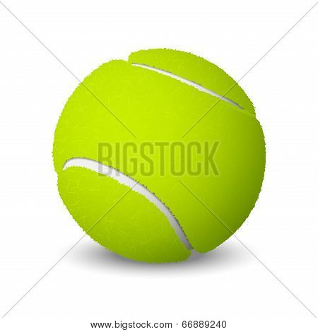Tennis Ball Isolated On White Background. Vector Illustration