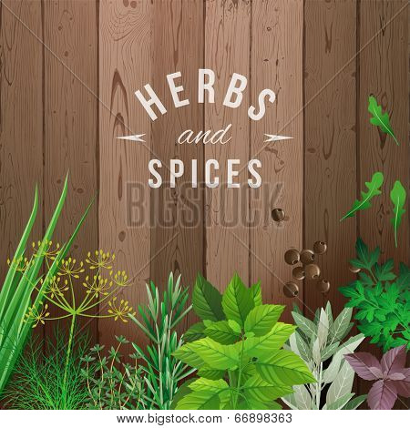 Highly detailed herbs and spices over wooden background