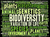 image of biodiversity  - Biodiversity in word collage - JPG