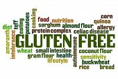 picture of sorghum  - Gluten Free word cloud on white background - JPG
