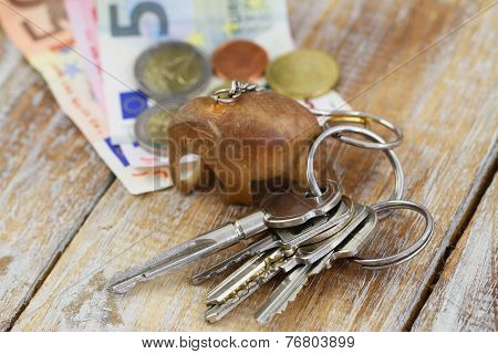 Bunch of keys on chain with little wooden elephant and banknotes