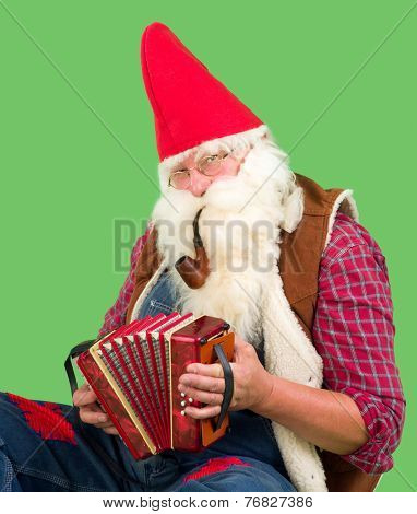 Funny garden gnome playing music on his accordion