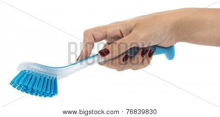Blue Dishwashing Brush on Hand  Green