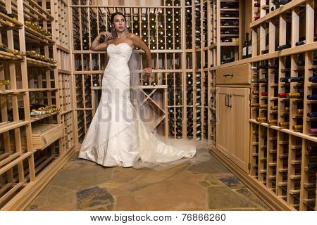 A modern bride poses indoors with available light