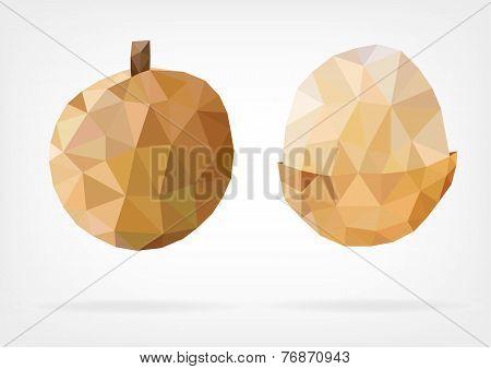 Low Poly Longan fruit
