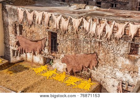 Traditional Leather Tanneries