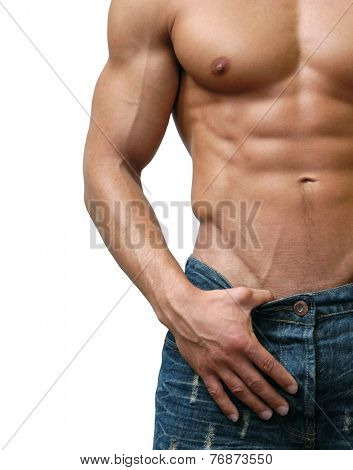 Muscular male torso isolated on white
