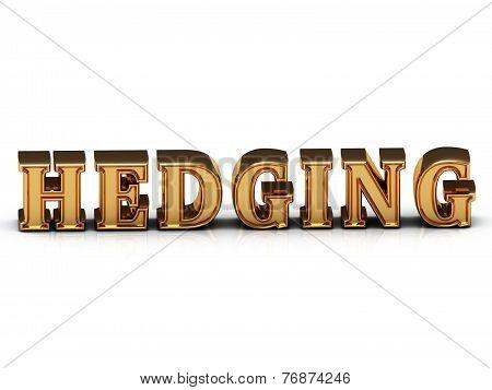 Hedging Inscription Large Golden Letter