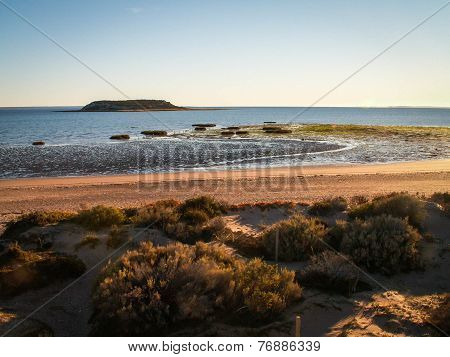 Beach With Grasses