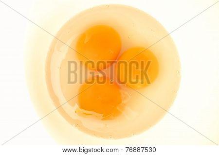 Egg Yolks.