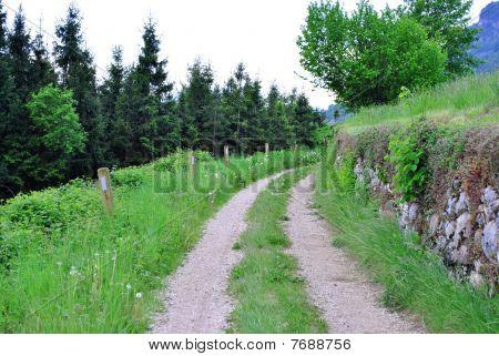 Bell Dirt Road