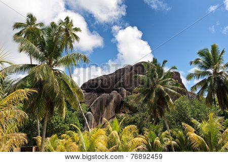 View of Eagles Nest Mountain, La Digue, Seychelles towering above the lush green tropical vegetation and palm trees