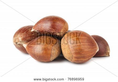 Heap Of Brown Sweet Chestnuts
