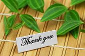 stock photo of bamboo leaves  - Thank you card with green leaves on bamboo mat - JPG