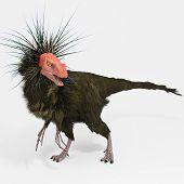picture of dinosaur  - Dinosaur Ornitholestes  - JPG