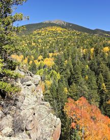foto of lamar  - Lamar Haines Memorial Wildlife Area in the San Francisco Mountains north of Flagstaff Arizona and a view of Agassiz Peak in the Fall  - JPG