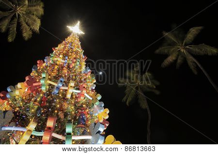 Christmas tree at Honolulu Hale