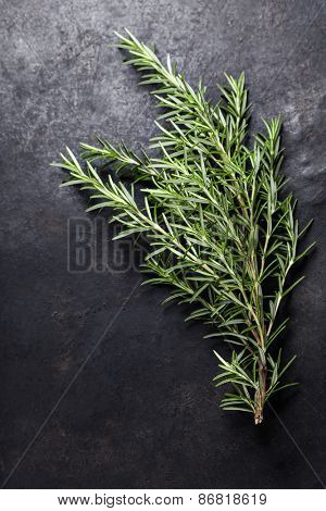 Rosemary on dark vintage background