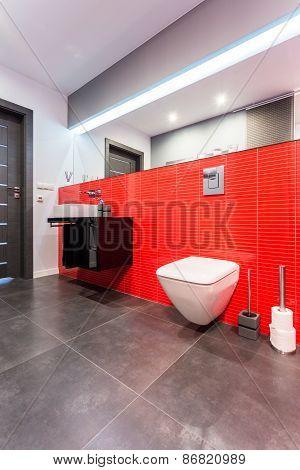 Elegant Toilet In Red