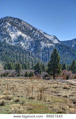 Barn and tree in Utah vista