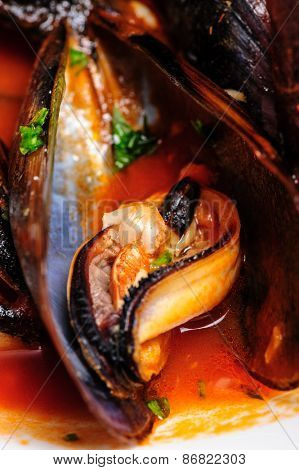 Macro shot of mussels prepared in italian rustic style with wine and parsley