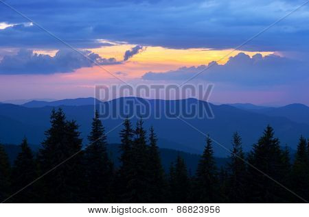 Evening landscape. Sunset in the mountains. Spruce forest on the slopes