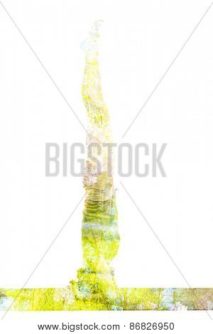 Nature harmony healthy lifestyle concept - double exposure image of  woman doing yoga asana headstand (sirsasana) pose exercise isolated on white background