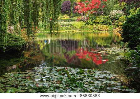 Quiet pond, overgrown with lilies, among the weeping willows. Fantastic floral Butchart Gardens on Vancouver Island, Canada