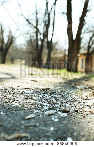 Shards of glass on road with trees, outdoors