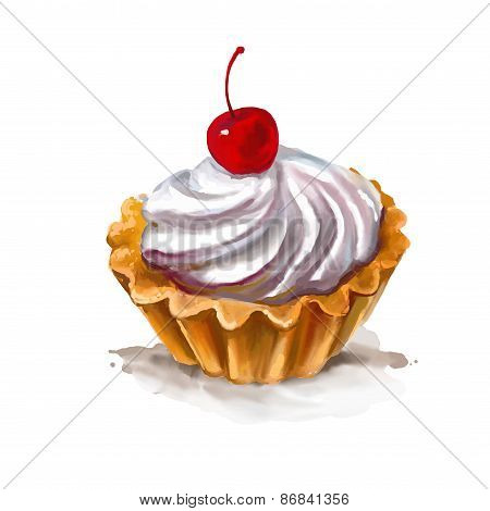 Cherry cupcake vector illustration  hand drawn  painted watercolor