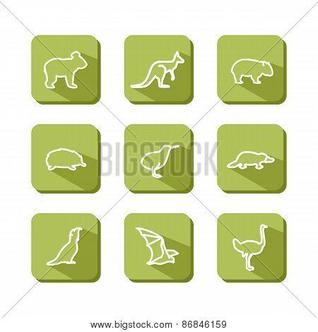 Animals - Australia