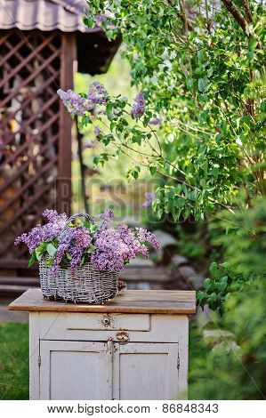 lilac flowers in basket on wooden bureau in spring garden