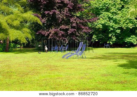 Summer Park With Green Lawn