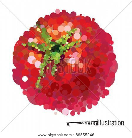 Vector ripe tomato that consists of circles