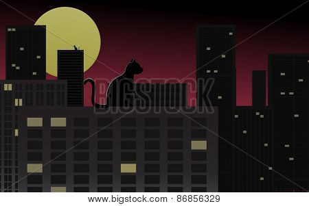 Night city scene