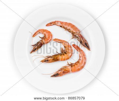 Tiger shrimps on white.
