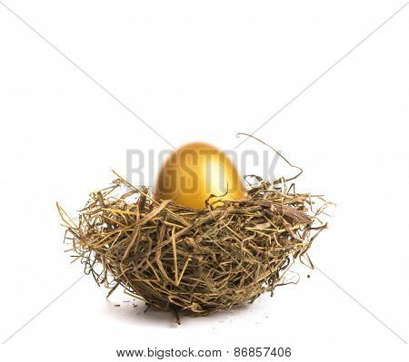Golden egg with nest