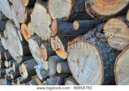 Background of firewood stacked