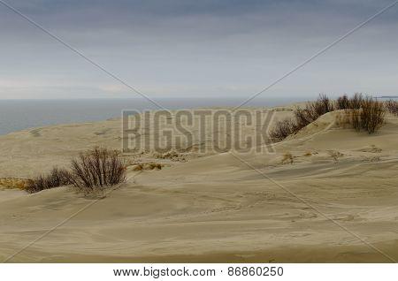 Sand Dune Efa
