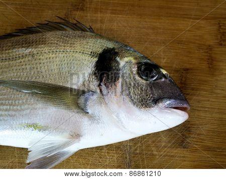 Sea Bream Fish On Wooden Board