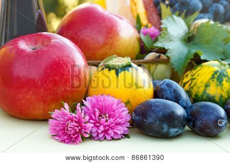 Fruits of summer and fall