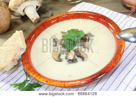 Delicious Calf Soup Mt Mushrooms And Parsley