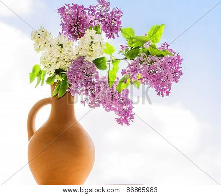 Flowering Branch Of Lilac In A Jar