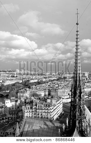Paris From Top Notre Dame, Black-and-white