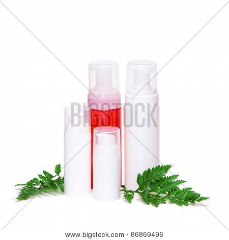 Skincare Products With Green Fern Leaves
