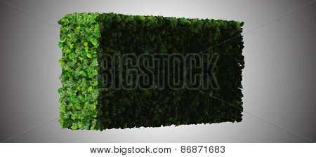 Quadrangle, rectangle made from green leaves isolated on white background. 3D render.