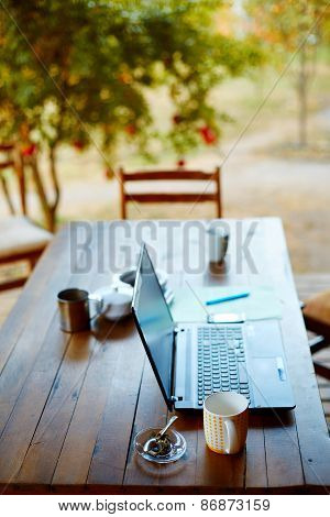 Laptop computer and coffee in the garden