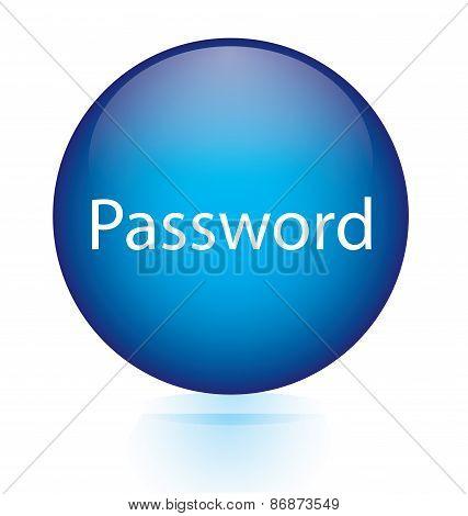 Password blue circular button