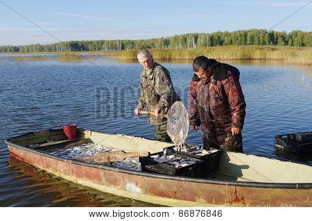 Fishermen With Catch Of Fish Coregonus